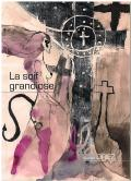 Picture - Raynald Driez : La Soif Grandiose