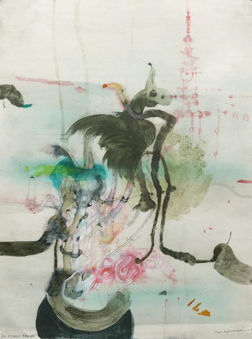 Picture - Les oiseaux étranges